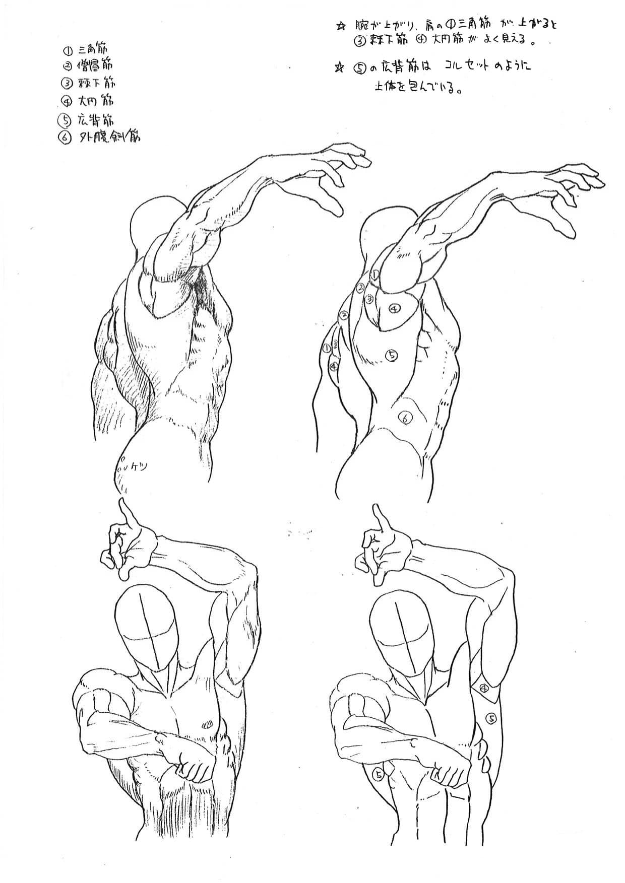 Chequea esta guía anatómica de Capcom para sus juegos