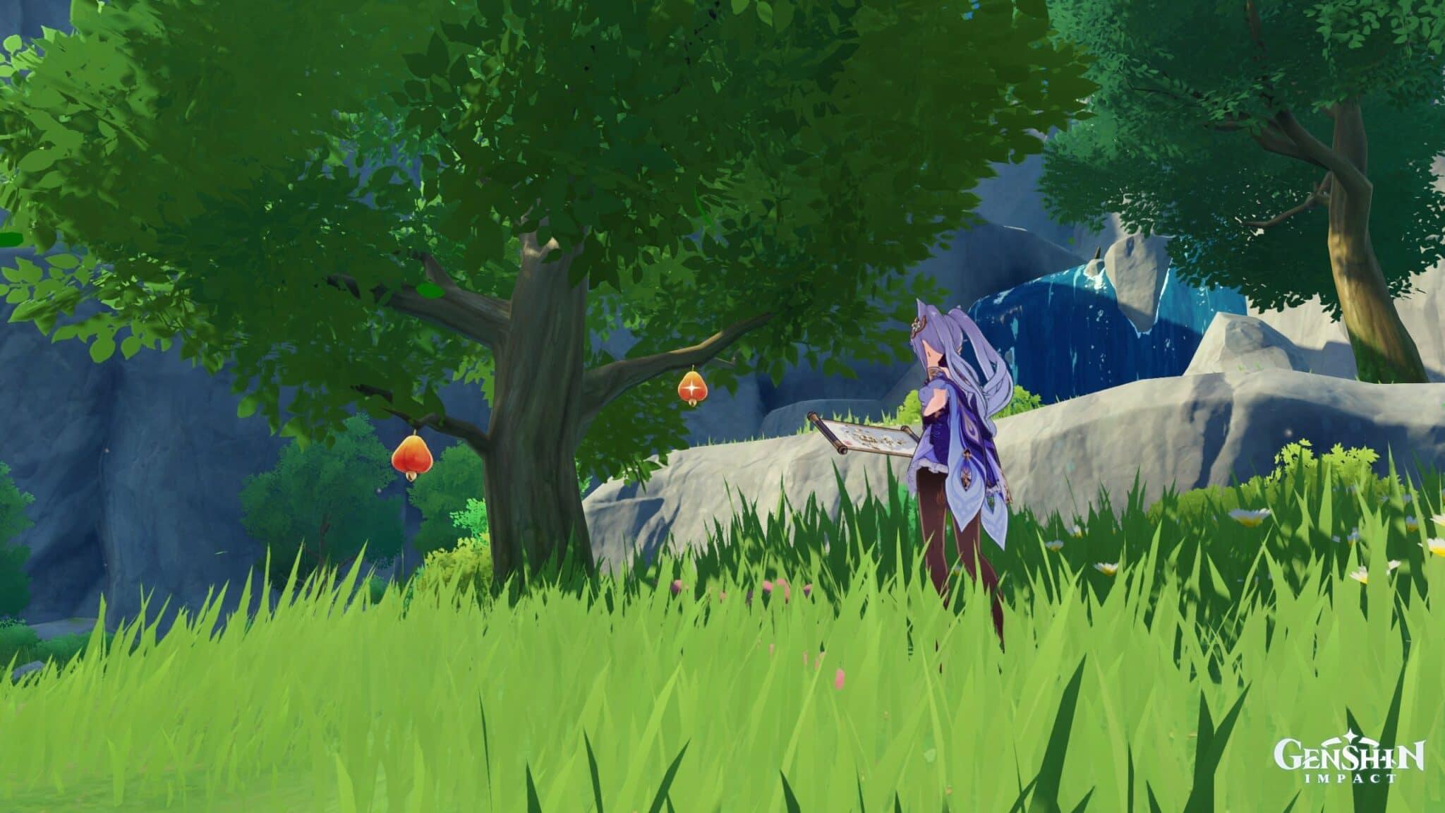 Genshin Impact donde encontrar madera de Cuihua, GamersRD